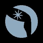spiderveins_icon